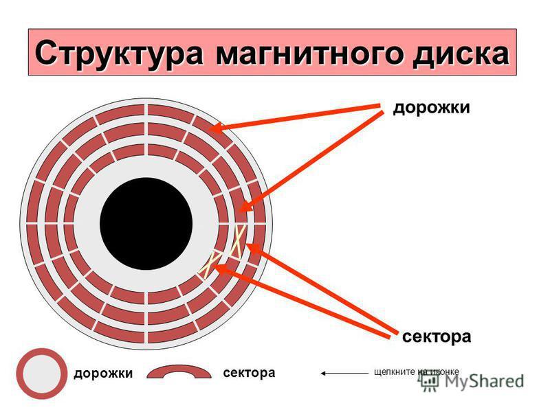Структура магнитного диска дорожки сектора дорожки сектора щелкните на иконке