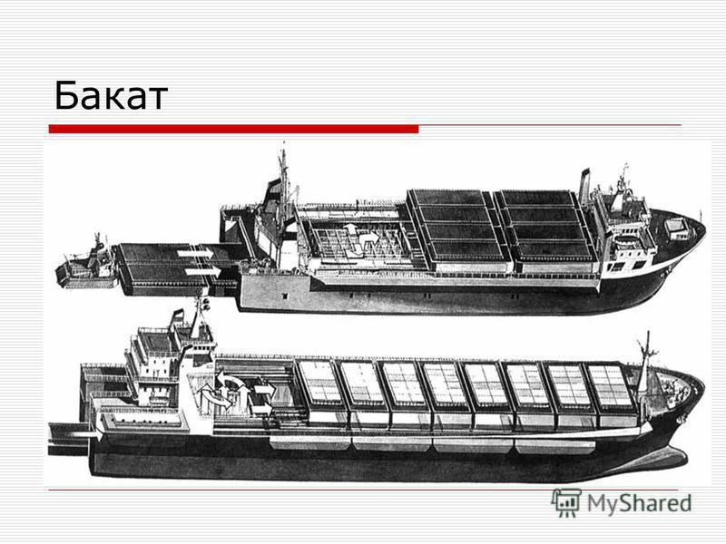 Бакат