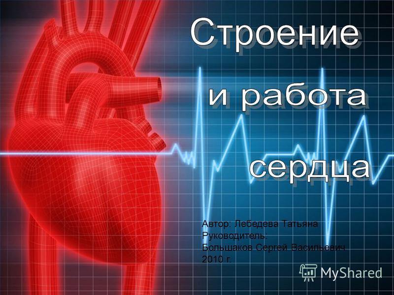 1 Автор: Лебедева Татьяна Руководитель: Большаков Сергей Васильевич 2010 г.
