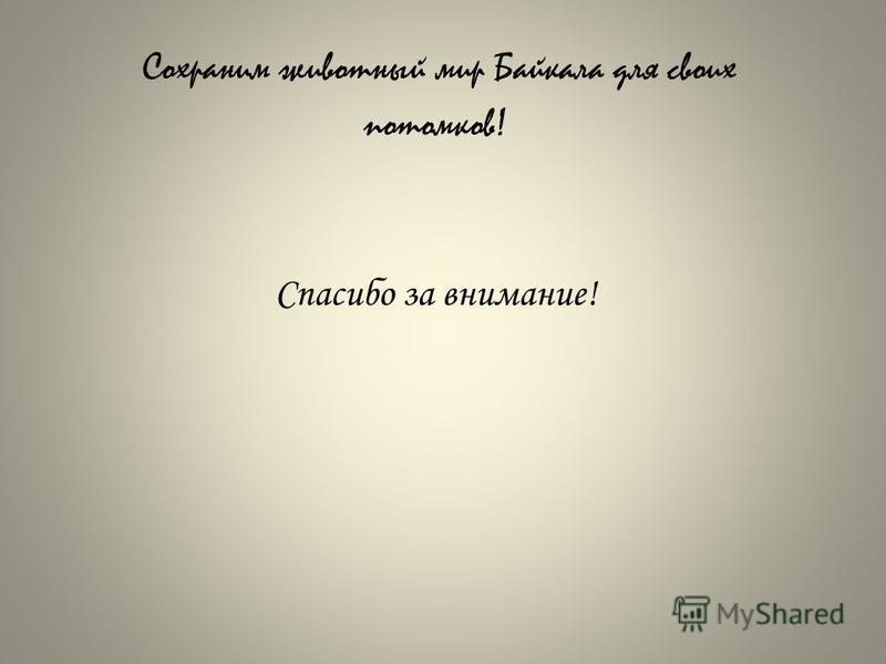 Сохраним животный мир Байкала для своих потомков! Спасибо за внимание!