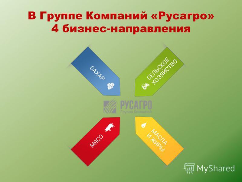 В Группе Компаний «Русагро» 4 бизнес-направления