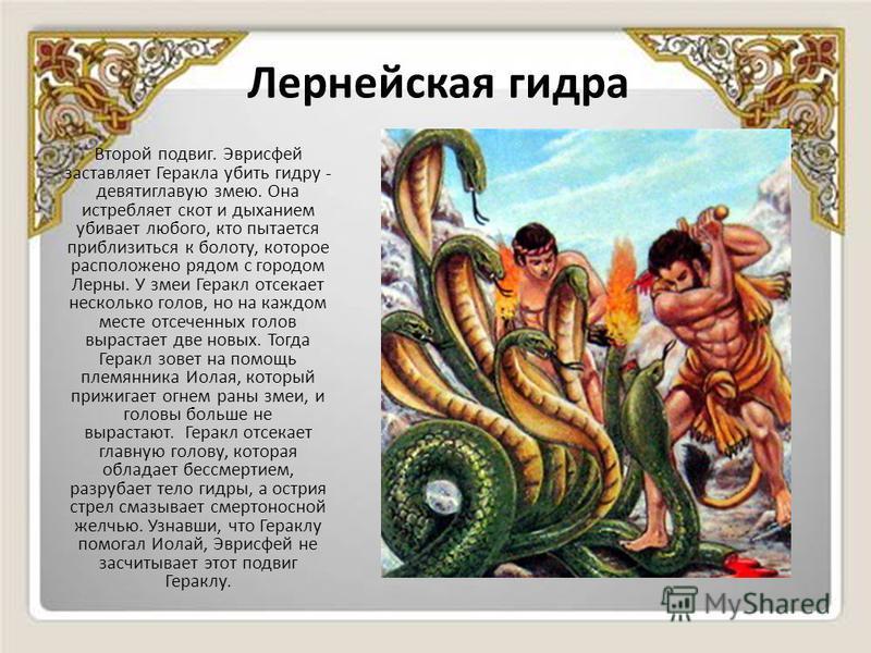 Лернейская гидра Второй подвиг. Эврисфей заставляет Геракла убить гидру - девятиглавую змею. Она истребляет скот и дыханием убивает любого, кто пытается приблизиться к болоту, которое расположено рядом с городом Лерны. У змеи Геракл отсекает нескольк