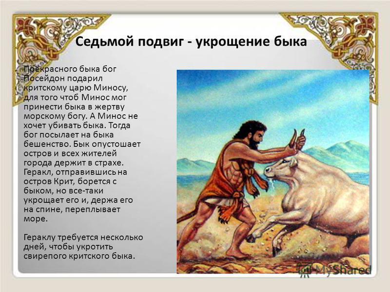 Седьмой подвиг - укрощение быка Прекрасного быка бог Посейдон подарил критскому царю Миносу, для того чтоб Минос мог принести быка в жертву морскому богу. А Минос не хочет убивать быка. Тогда бог посылает на быка бешенство. Бык опустошает остров и вс