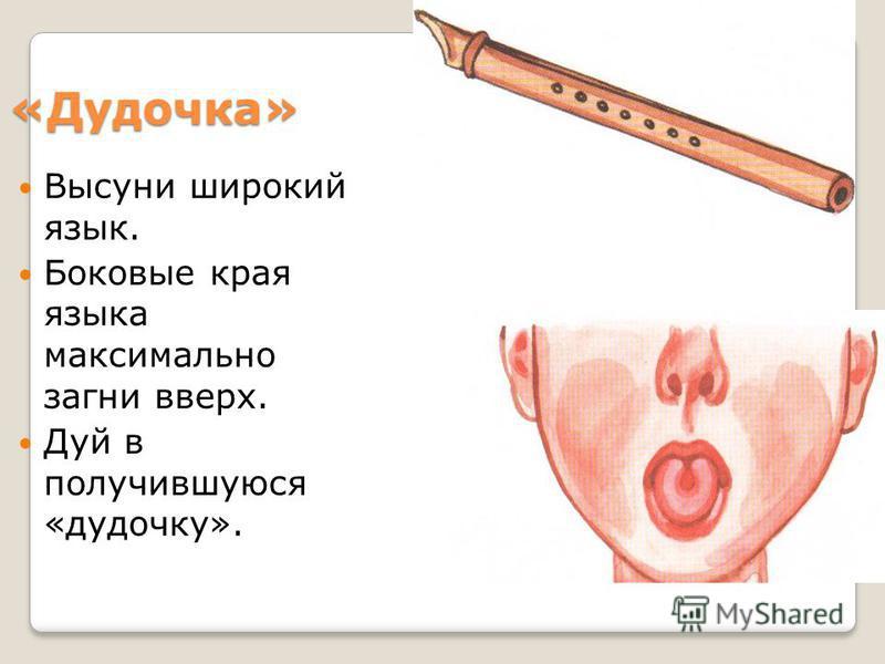 «Дудочка» Высуни широкий язык. Боковые края языка максимально загни вверх. Дуй в получившуюся «дудочку».