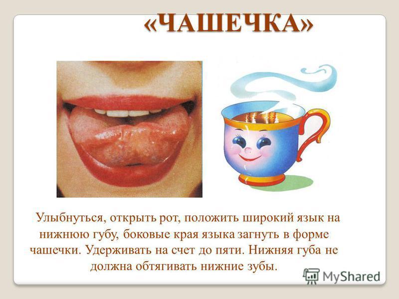 «ЧАШЕЧКА» «ЧАШЕЧКА» Улыбнуться, открыть рот, положить широкий язык на нижнюю губу, боковые края языка загнуть в форме чашечки. Удерживать на счет до пяти. Нижняя губа не должна обтягивать нижние зубы.