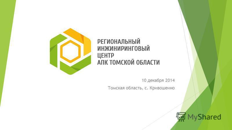 10 декабря 2014 Томская область, с. Кривошеино