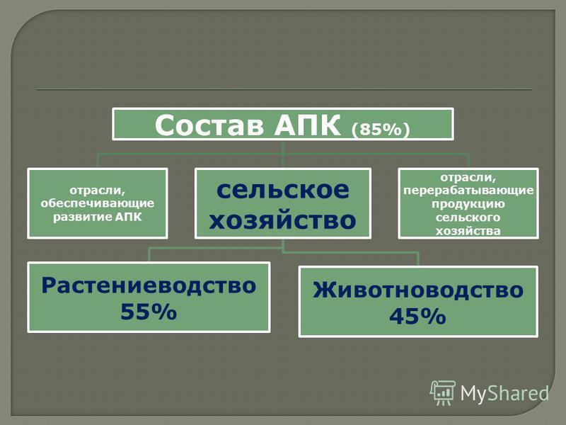 Состав АПК (85%) отрасли, обеспечивающие развитие АПК сельское хозяйство Растениеводство 55% Животноводство 45% отрасли, перерабатывающие продукцию сельского хозяйства