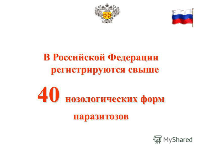 В Российской Федерации регистрируются свыше 40 нозологических форм паразитозов