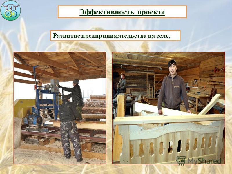 Эффективность проекта Развитие предпринимательства на селе.