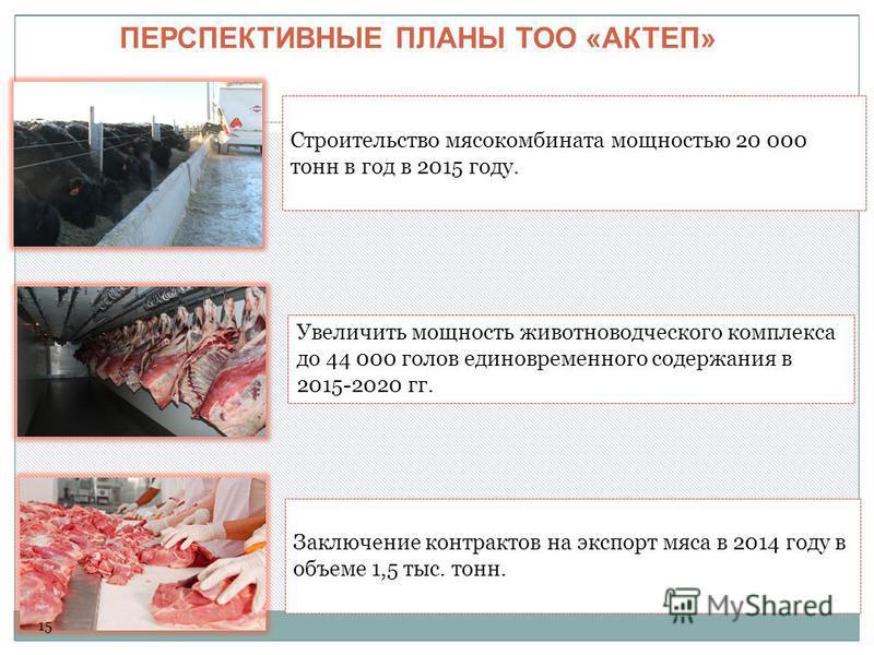 Увеличить мощность животноводческого комплекса до 44 000 голов единовременного содержания в 2015-2020 гг. ПЕРСПЕКТИВНЫЕ ПЛАНЫ ТОО «АКТЕП» Строительство мясокомбината мощностью 20 000 тонн в год в 2015 году. Заключение контрактов на экспорт мяса в 201