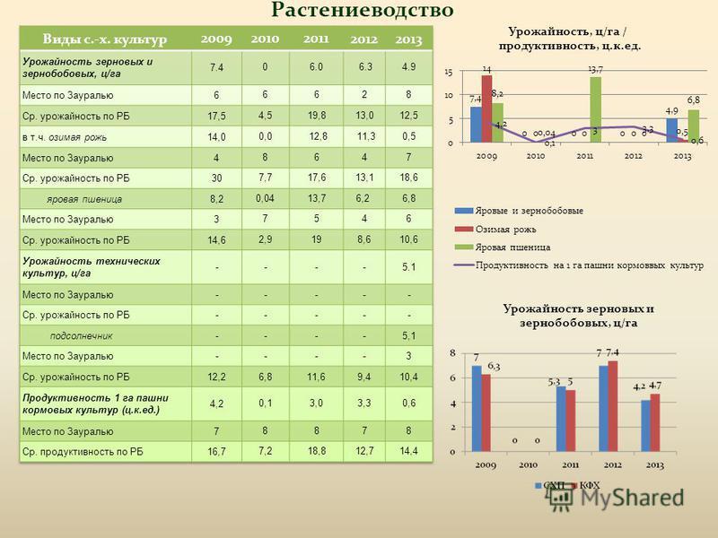 Растениеводство Урожайность, ц/га / продуктивность, ц.к.ед. Урожайность зерновых и зернобобовых, ц/га