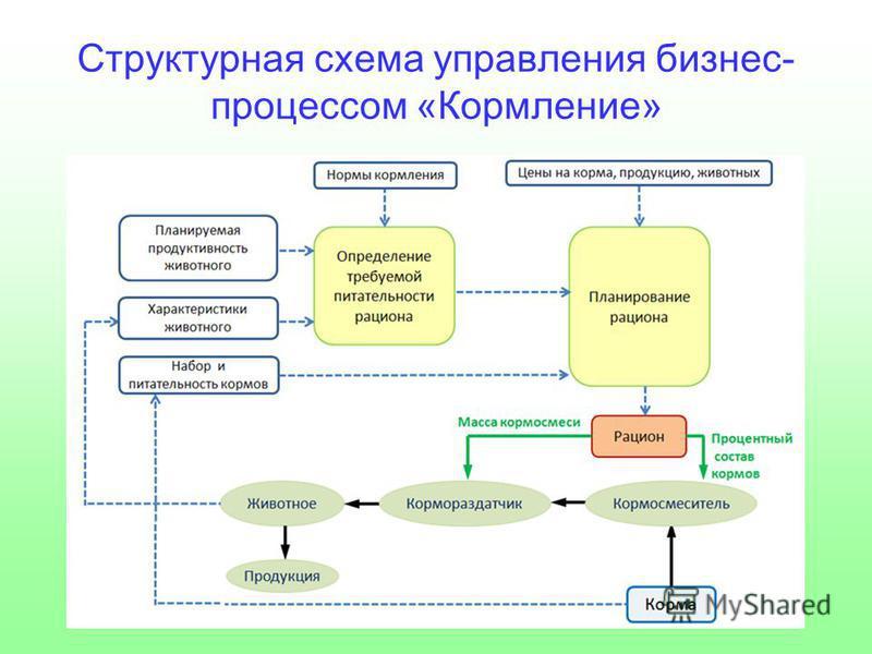 Структурная схема управления бизнес- процессом «Кормление»