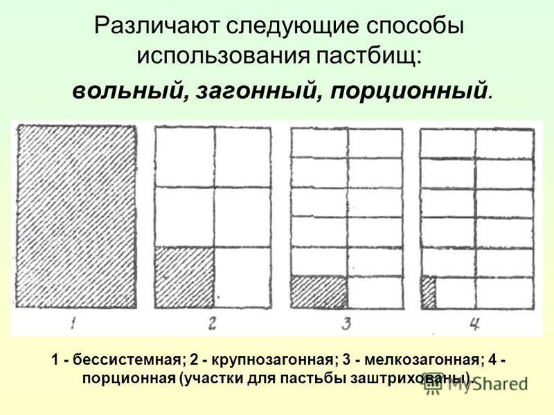 Различают следующие способы использования пастбищ: вольный, загонный, порционный. 1 - бессистемная; 2 - крупнозагонная; 3 - мелкозагонная; 4 - порционная (участки для пастьбы заштрихованы).