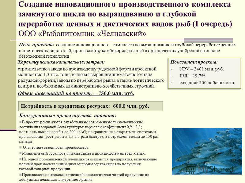 Создание инновационного производственного комплекса замкнутого цикла по выращиванию и глубокой переработке ценных и диетических видов рыб (I очередь) ООО «Рыбопитомник «Челнавский» Цель проекта: создание инновационного комплекса по выращиванию и глуб