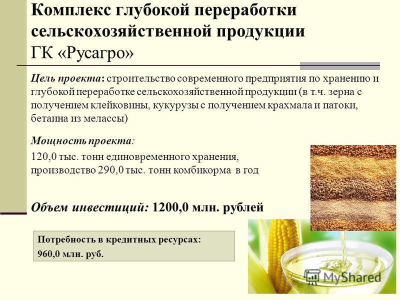 Цель проекта: строительство современного предприятия по хранению и глубокой переработке сельскохозяйственной продукции (в т.ч. зерна с получением клейковины, кукурузы с получением крахмала и патоки, бетаина из мелассы) Потребность в кредитных ресурса