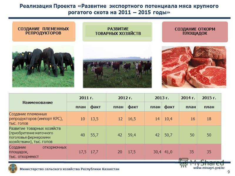 9 www.minagri.gov.kz Министерство сельского хозяйства Республики Казахстан СОЗДАНИЕ ПЛЕМЕННЫХ РЕПРОДУКТОРОВ СОЗДАНИЕ ОТКОРМ ПЛОЩАДОК РАЗВИТИЕ ТОВАРНЫХ ХОЗЯЙСТВ Реализация Проекта «Развитие экспортного потенциала мяса крупного рогатого скота на 2011 –