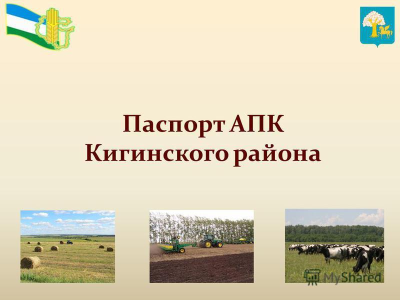 Паспорт АПК Кигинского района