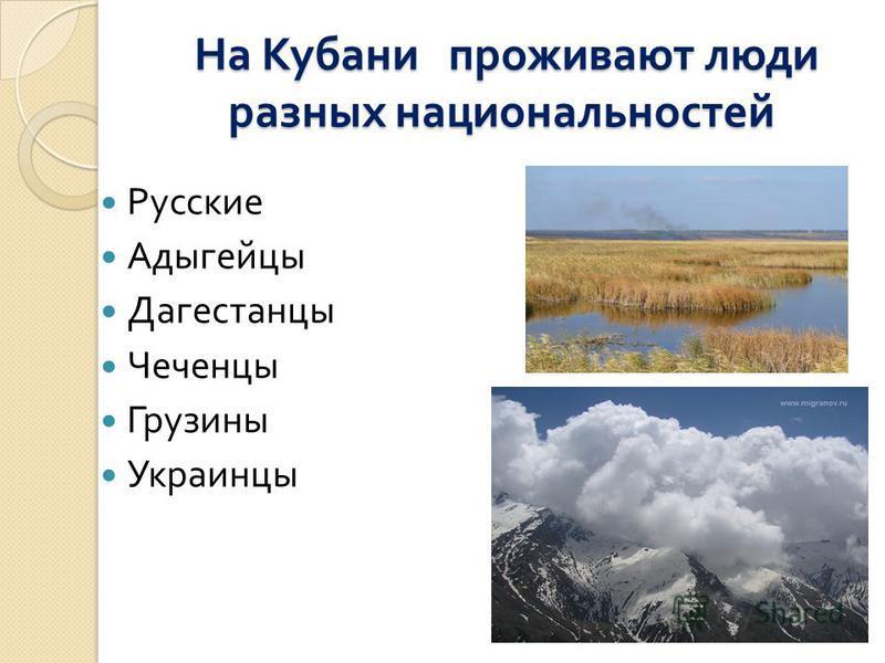 На Кубани проживают люди разных национальностей На Кубани проживают люди разных национальностей Русские Адыгейцы Дагестанцы Чеченцы Грузины Украинцы