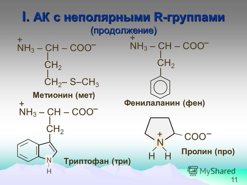 11 І. АК с неполярными R-группами (продолжение) СН 2 NH 3 – СН – COO СН 2 – S–CH 3 + Метионин (мет) Триптофан (три) СН 2 NH 3 – СН – COO + Фенилаланин (фен) СН 2 NH 3 – СН – COO + N H H N H COO + Пролин (про)