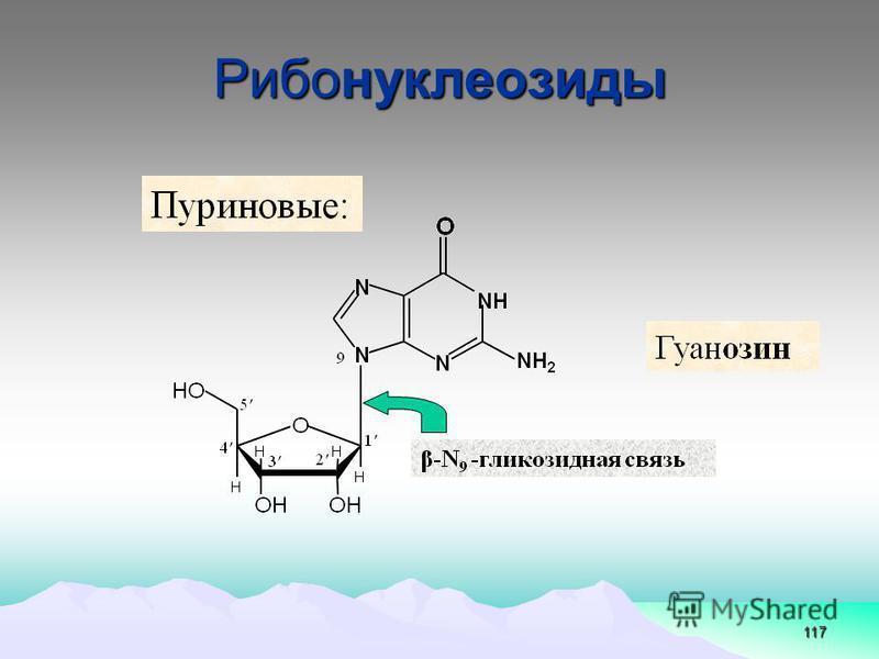 117 Рибонуклеозиды