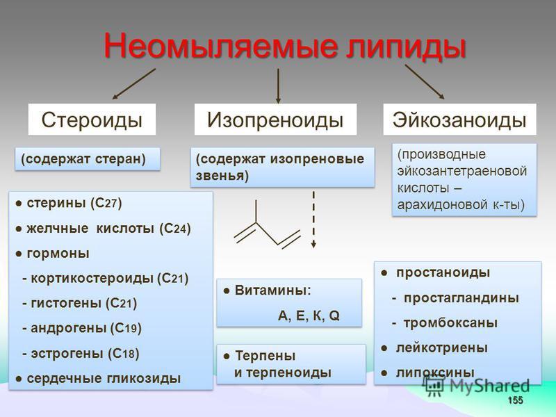 155 Неомыляемые липиды Стероиды ИзопреноидыЭйкозаноиды (содержат стеран) (содержат изопреновые звенья) (производные эйкозантетраеновой кислоты – арахидоновой к-ты) Витамины: А, Е, К, Q Витамины: А, Е, К, Q простаноиды - простагландины - тромбоксаны л