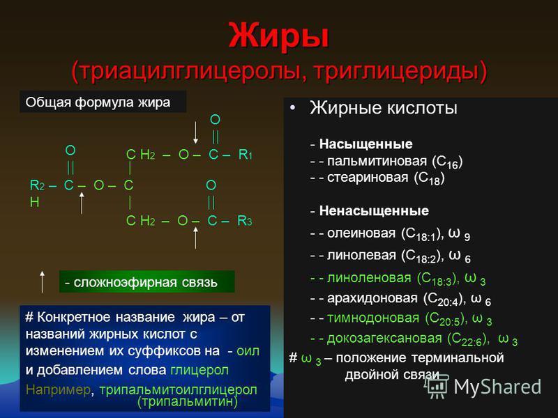 156 Жиры (триацилглинцеролы, триглинцериды) Жирные кислоты - Насыщенные - - пальмитиновая (С 16 ) - - стеариновая (С 18 ) - Ненасыщенные - - олеиновая (С 18:1 ), ω 9 - - линолевая (С 18:2 ), ω 6 - - линоленовая (С 18:3 ), ω 3 - - арахидоновая (С 20:4