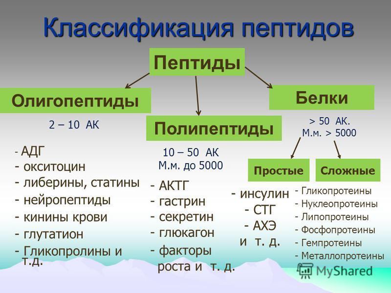 Классификация пептидов - Гликопротеины - Нуклеопротеины - Липопротеины - Фосфопротеины - Гемпротеины - Металлопротеины Олигопептиды 2 – 10 АК 10 – 50 АК М.м. до 5000 > 50 АК. М.м. > 5000 - АДГ - окситоцин - либерины, статины - нейропептиды - кинины к