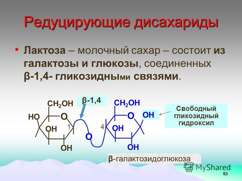 63 Лактоза – молочный сахар – состоит из галактозы и глюкозы, соединенных β-1,4- глинкозидны ми связями. Редуцирующие дисахариды 4 β-1,4 О СН 2 ОН ОН НО 1 О СН 2 ОН ОН О Свободный глинкозидный гидроксил β-галактозидоглюкоза