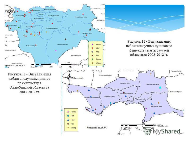 Рисунок 11 - Визуализация неблагополучных пунктов по бешенству в Актюбинской области за 2003-2012 гг. Рисунок 12 - Визуализация неблагополучных пунктов по бешенству в Атырауской области за 2003-2012 гг.