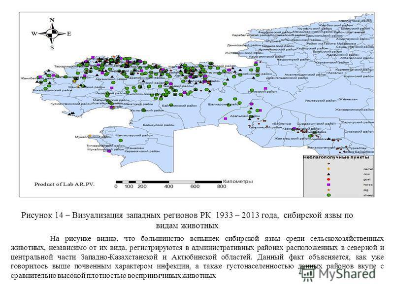 Рисунок 14 – Визуализация западных регионов РК 1933 – 2013 года, сибирской язвы по видам животных На рисунке видно, что большинство вспышек сибирской язвы среди сельскохозяйственных животных, независимо от их вида, регистрируются в административных р