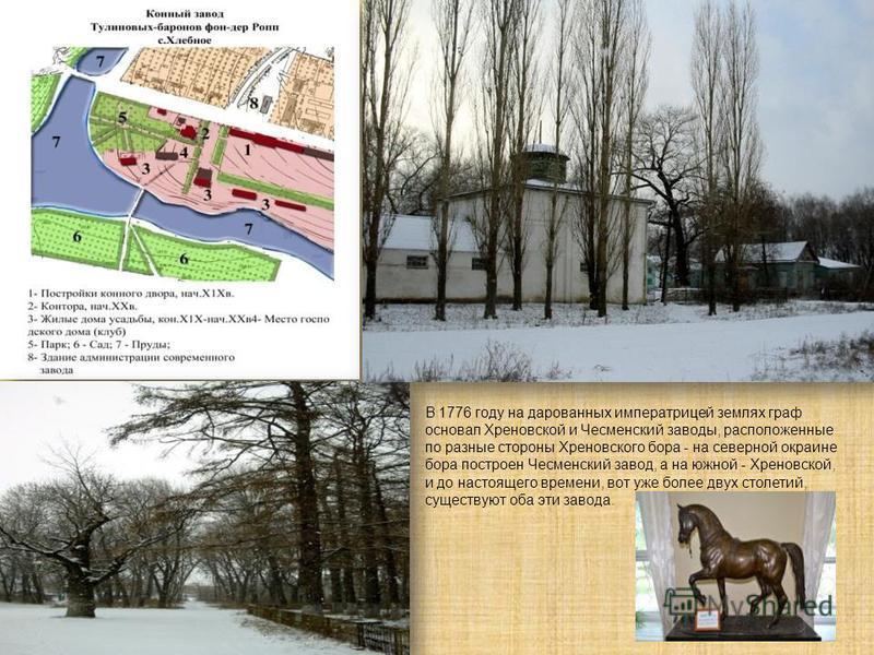 В 1776 году на дарованных императрицей землях граф основал Хреновской и Чесменский заводы, расположенные по разные стороны Хреновского бора - на северной окраине бора построен Чесменский завод, а на южной - Хреновской, и до настоящего времени, вот уж