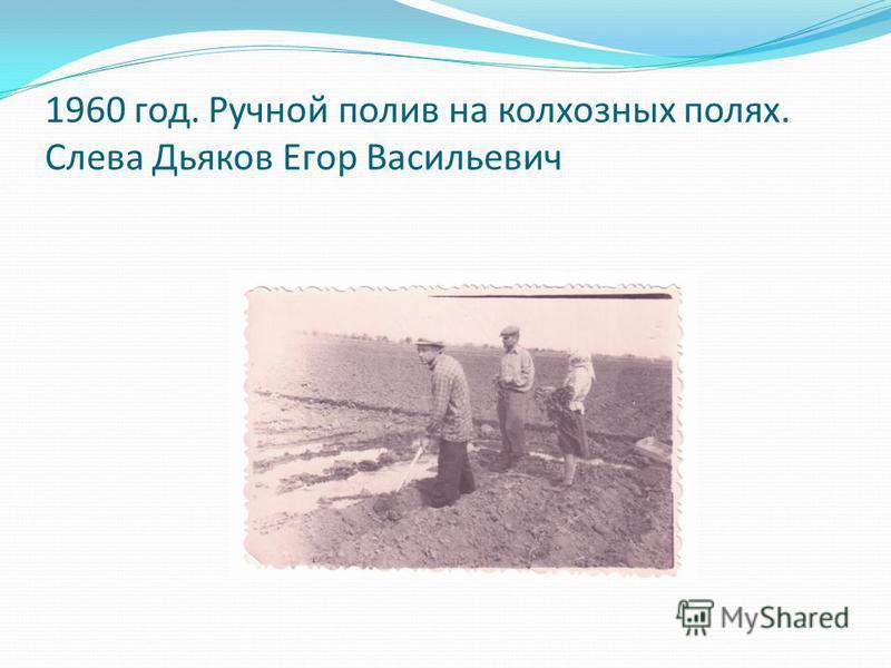 1960 год. Ручной полив на колхозных полях. Слева Дьяков Егор Васильевич