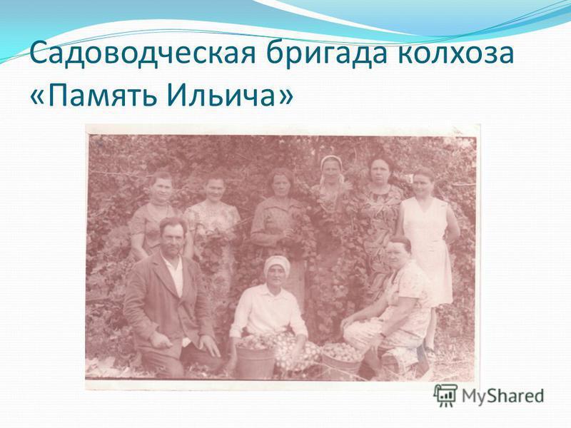 Садоводческая бригада колхоза «Память Ильича»