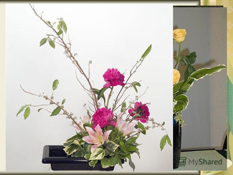 Икебана через совершенство растительных линий отражает формы природы, это её главная задача. Композиции представляют собой настоящие произведения искусства, однако именно форма и изгибы, а не сочетание цветов и красок. Каждый мастер икебаны помнит, ч