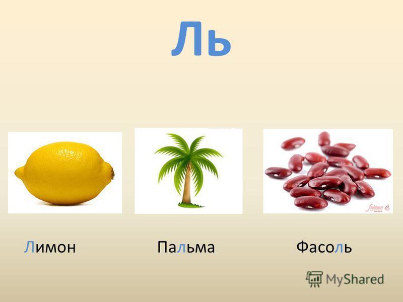 Ль Лимон Пальма Фасоль
