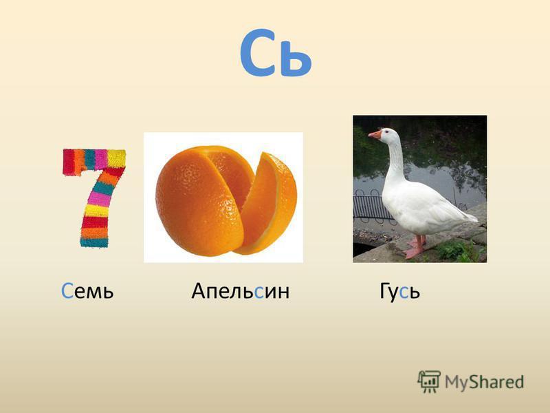 Сь Семь Апельсин Гусь