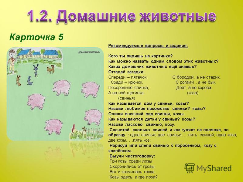 Карточка 5 Рекомендуемые вопросы и задания: Кого ты видишь на картинке? Как можно назвать одним словом этих животных? Каких домашних животных ещё знаешь? Отгадай загадки: Спереди – пятачок, С бородой, а не старик, Сзади – крючок. С рогами, а не бык.