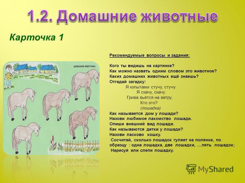 Карточка 1 Рекомендуемые вопросы и задания: Кого ты видишь на картинке? Как можно назвать одним словом это животное? Каких домашних животных ещё знаешь? Отгадай загадку: Я копытами стучу, стучу. Я скачу, скачу. Грива вьётся на ветру, Кто это? (лошадк