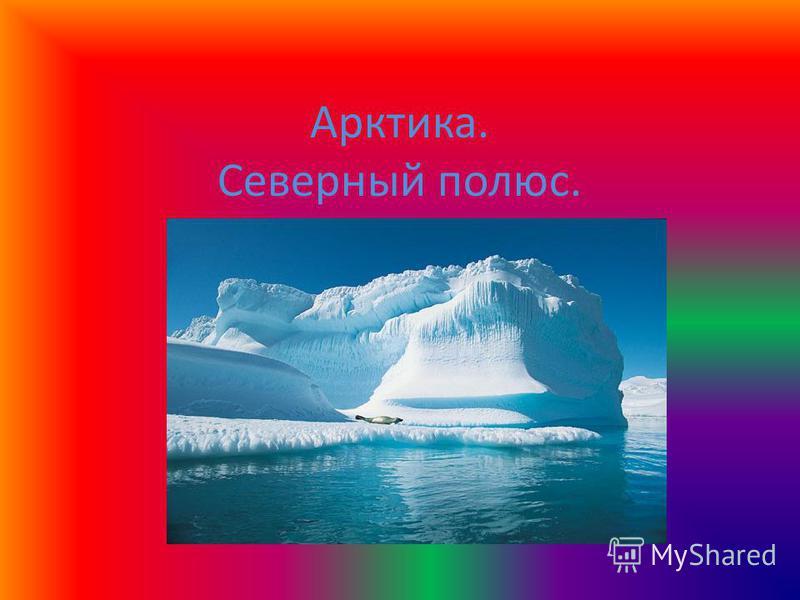 Арктика. Северный полюс.
