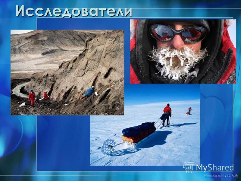 Исследователи Николаева С.Б. ®