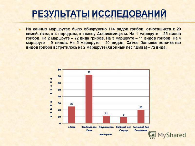На данных маршрутах было обнаружено 114 видов грибов, относящихся к 20 семействам, к 4 порядкам, к классу Агарикомицеты. На 1 маршруте – 25 видов грибов. На 2 маршруте – 72 вида грибов. На 3 маршруте – 11 видов грибов. На 4 маршруте – 9 видов. На 5 м