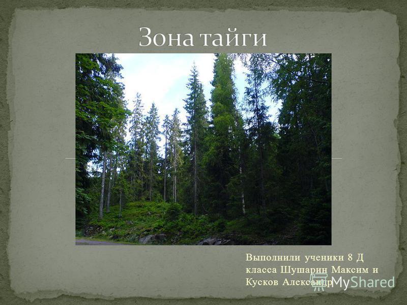 Выполнили ученики 8 Д класса Шушарин Максим и Кусков Александр