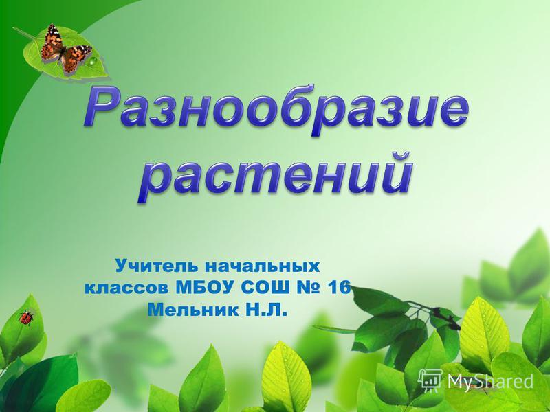 Учитель начальных классов МБОУ СОШ 16 Мельник Н.Л.