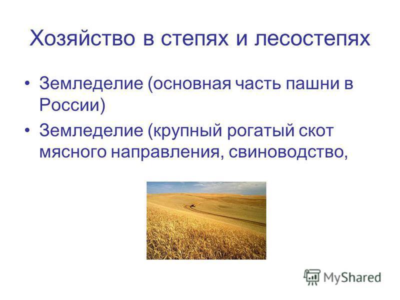 Хозяйство в степях и лесостепях Земледелие (основная часть пашни в России) Земледелие (крупный рогатый скот мясного направления, свиноводство,