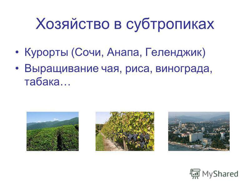 Хозяйство в субтропиках Курорты (Сочи, Анапа, Геленджик) Выращивание чая, риса, винограда, табака…