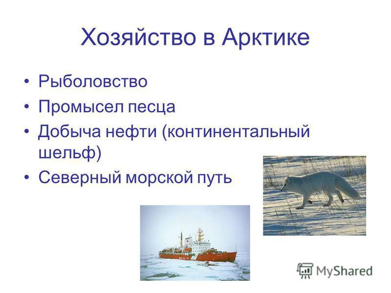Хозяйство в Арктике Рыболовство Промысел песца Добыча нефти (континентальный шельф) Северный морской путь