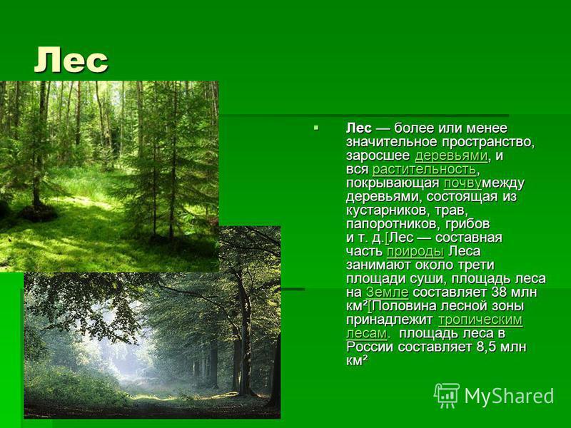 Лес Лес более или менее значительное пространство, заросшее деревьями, и вся растительность, покрывающая почву между деревьями, состоящая из кустарников, трав, папоротников, грибов и т. д.[Лес составная часть природы Леса занимают около трети площади