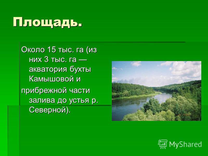 Площадь. Около 15 тыс. га (из них 3 тыс. га акватория бухты Камышовой и прибрежной части залива до устья р. Северной).