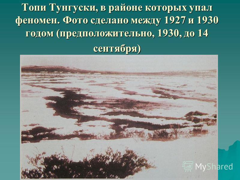 Топи Тунгуски, в районе которых упал феномен. Фото сделано между 1927 и 1930 годом (предположительно, 1930, до 14 сентября)