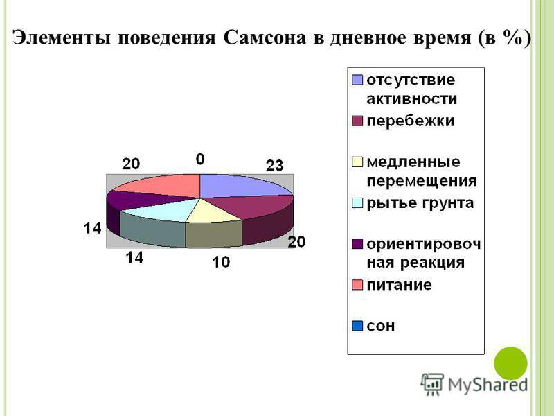 Элементы поведения Самсона в дневное время (в %)